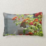 Monarch Butterfly on Red Butterfly Bush Lumbar Pillow