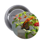 Monarch Butterfly on Red Butterfly Bush Pinback Button