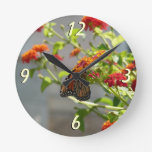 Monarch Butterfly on Red Butterfly Bush Round Clock