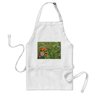 Monarch butterfly on red orange flower plant adult apron