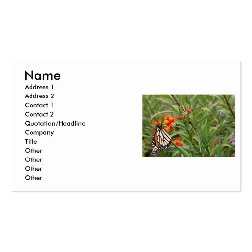 Monarch butterfly on red orange flower plant Double-Sided standard business cards (Pack of 100)