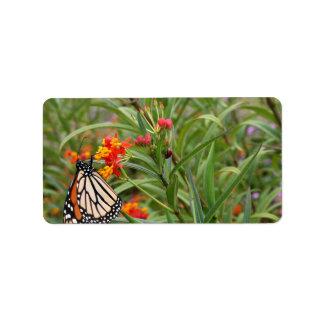 Monarch butterfly on red orange flower plant address label