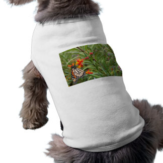 Monarch butterfly on red orange flower plant T-Shirt