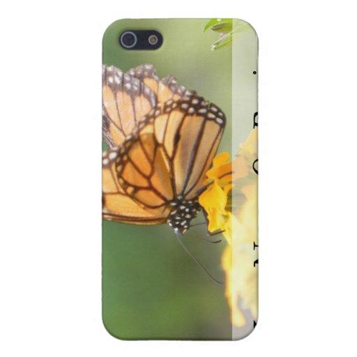 Monarch Butterfly on Siberian Wallflowers iPhone 5 Case