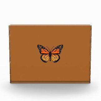 Monarch Butterfly on Sienna Award
