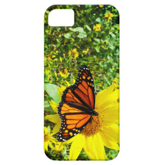 Monarch Butterfly on Sunflower iPhone 5 Cover