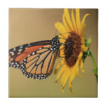 Monarch Butterfly on Sunflower Ceramic Tile