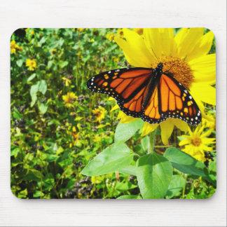 Monarch Butterfly on Sunflower Mousepad