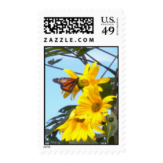 Monarch Butterfly on Sunflower Postage