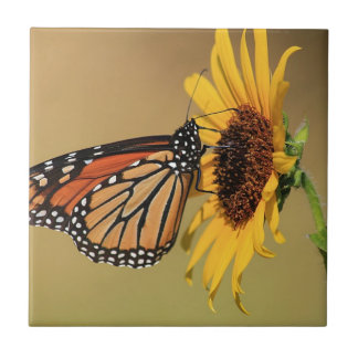 Monarch Butterfly on Sunflower Small Square Tile