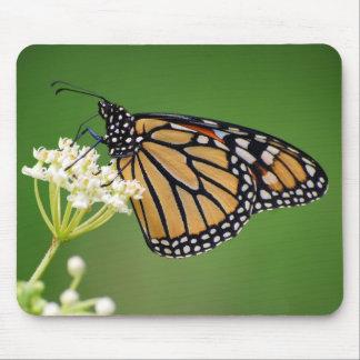 Monarch Butterfly on Swamp Milkweed Mousepad