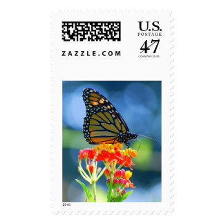 Monarch Butterfly on Tropical Milkweed, Vertical Postage