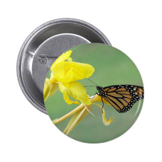 Monarch butterfly on yellow flower simple back pinback button