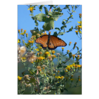 Monarch Butterfly On Yellow Wildflowers Card