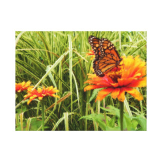 Monarch Butterfly Opening Wings on Zinnia Painting Canvas Print