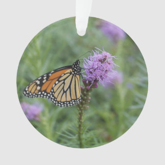 Monarch Butterfly Ornament