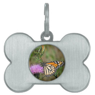 Monarch Butterfly Pet Tag