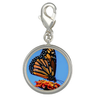 Monarch Butterfly - Photo Charms
