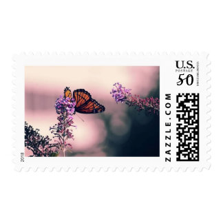 Monarch Butterfly Photo Stamp