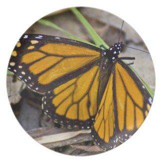 Monarch Butterfly Plate