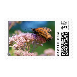"""Monarch Butterfly"" Postage"