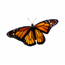 Monarch Butterfly Sculpture
