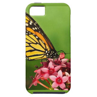 Monarch Butterfly  Side View Vibrant Photograph iPhone SE/5/5s Case