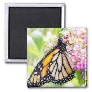 Monarch Butterfly Sipping Nectar 2 Inch Square Magnet