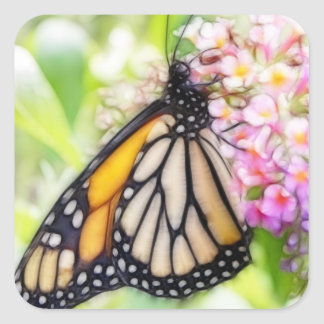 Monarch Butterfly Sipping Nectar Square Sticker