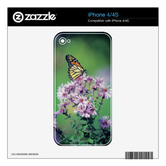 Monarch Butterfly Skin For The iPhone 4