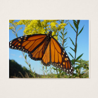 Monarch butterfly spreads his wings business card