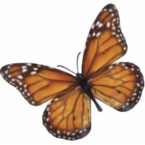 Monarch Butterfly Statuette