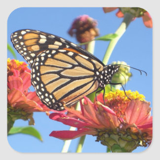 Monarch Butterfly Stickers