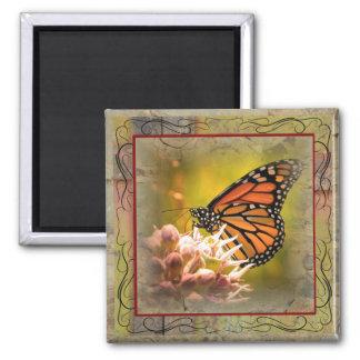 Monarch Butterfly Stylized Magnet