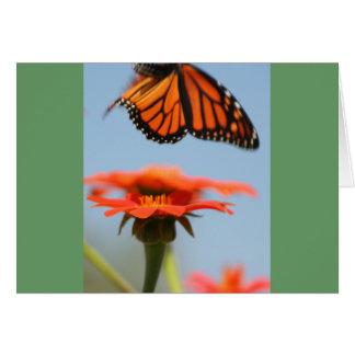 Monarch Butterfly Takes Flight Card