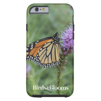 Monarch Butterfly Tough iPhone 6 Case