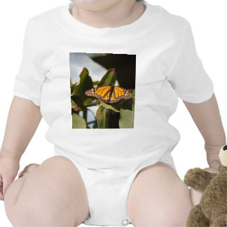 Monarch Butterfly Rompers