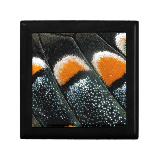 Monarch Butterfly Wing Gift Box