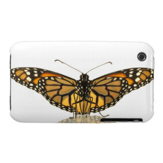 Monarch butterfly with wings spread iPhone 3 Case-Mate case