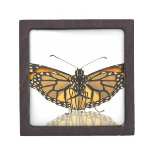 Monarch butterfly with wings spread premium jewelry boxes