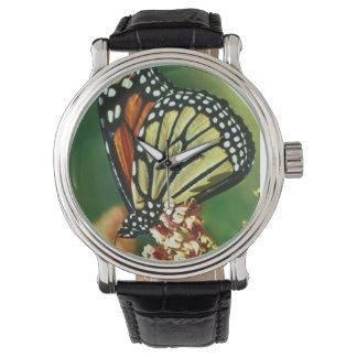 Monarch Butterfly Wrist Watches