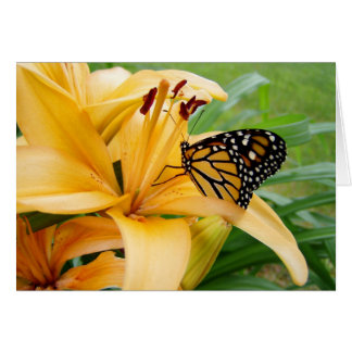 Monarch Butterfly Yellow Lily Flower Photo Card