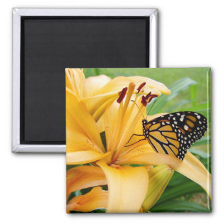 Monarch Butterfly Yellow Lily Flower Photo Magnet