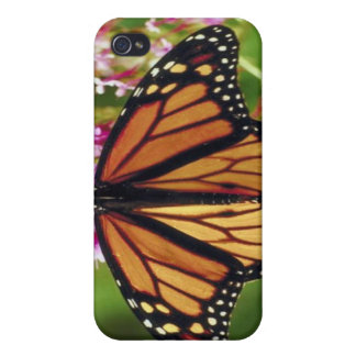 Monarch Butterly iPhone 4/4S Case