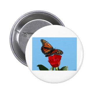 Monarch Pinback Buttons