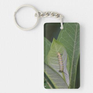 Monarch Caterpillar keychain