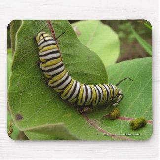 Monarch Caterpillar Mouse Mats