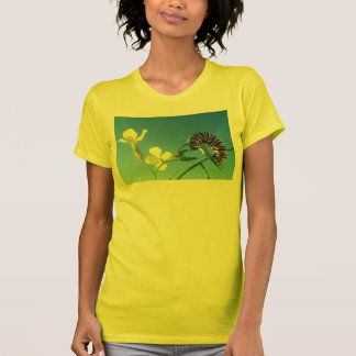 Monarch Caterpillar Tshirt