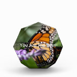 Monarch Danaus Plexippus Acrylic Award