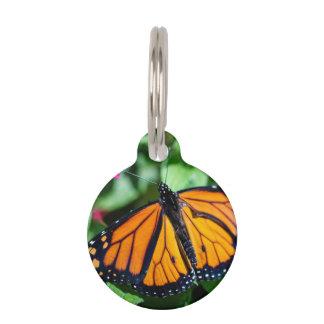 Monarch Danaus Plexippus Pet ID Tag